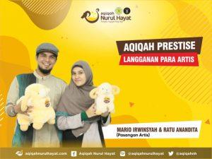 Harga Domba Untuk Aqiqah Bandung